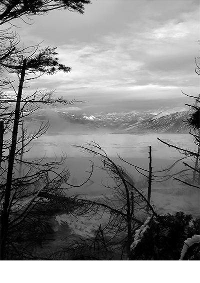 Lake  |  Yellowstone 2008