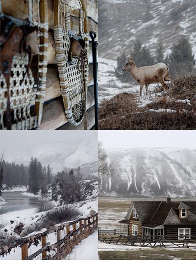 Januari 2008<br>Residence - Yellowstone<br><br>Met Marco de Vries samen op avontuur in een wit Yellowstone. Met een snowcat op zoek naar wolven in Yellowstone National Park is rijden door prachtige landschappen met geisers en bizons. Wolven zijn lastiger te vinden, maar het lukt ons om een roedel op grote afstand te spotten in het uitgestrekte park. De sfeer in de avond van Cook City voelt als een worp terug in de tijd van het oude wilde westen. Met m'n Sorels klunend door de sneeuw voor het laatste licht voordat de nacht valt. Een stilte valt in het park met alleen het huilen van de wolven in de verte.